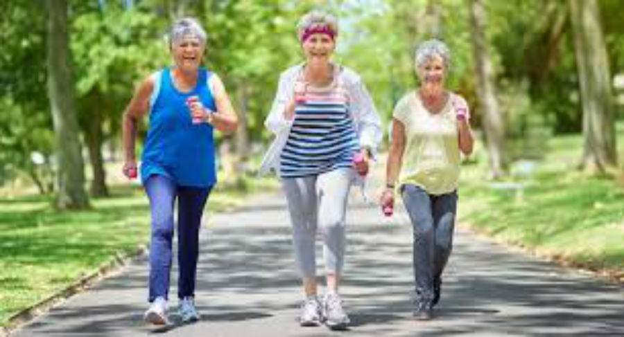 Seniors Daily Exercise